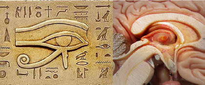 Meditación, la Pineal y la Energía Psíquica Supra-mental, relación con el sueño, la ansiedad, los v