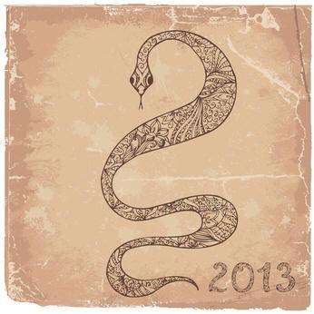 2013 - Año de la Serpiente
