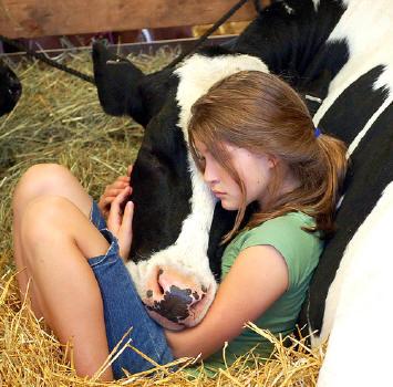 Da sensibilidade à compaixão
