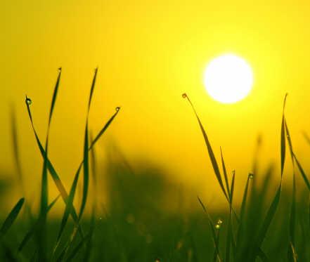 Ano Novo Solar, Páscoa, Pessach, o que têm em comum?