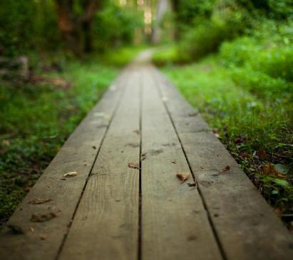 Só você pode traçar o seu caminho