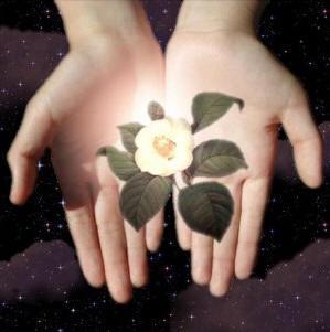 El milagro de la vida está en tus manos