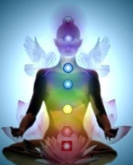 Los portales del cuerpo humano