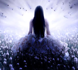 Consciencia a través de la Sombra y la Luz