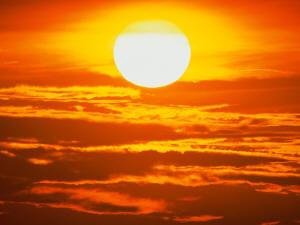 Sob o Sol da Consciência