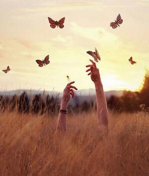 Hoje, seus pensamentos em paz, vaguearam pela tranquilidade das horas. São momentos de descanso.... veja mais.