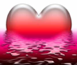 Camões, Paulo e Vinícius: confissões sobre o amor